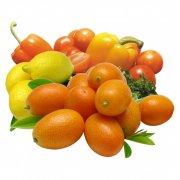 各种水果全集