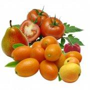 各种分层蔬果