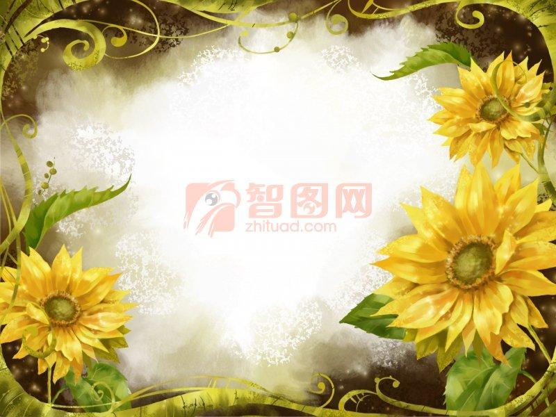 向日葵花纹设计