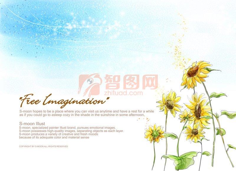 太陽花素材