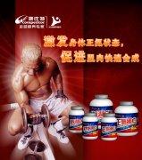 康比特促進肌肉合成藥品海報設計