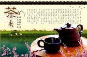 茶文化元素設計