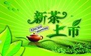 新茶上市海報設計