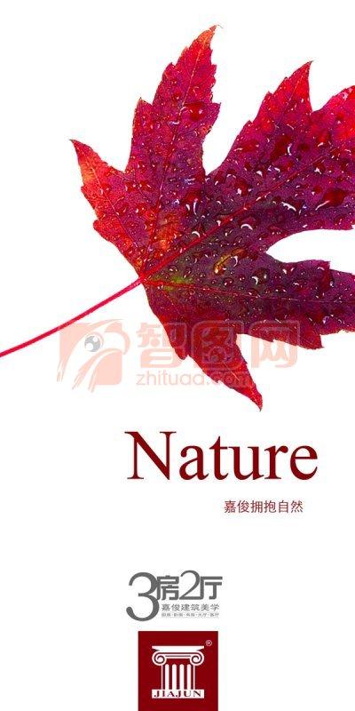 嘉俊陶瓷nature展板設計