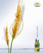 重慶啤酒海報設計