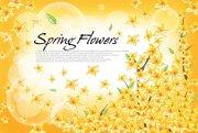 金黃色花朵