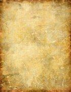 黄色纸张08