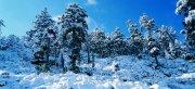 厚厚的雪景