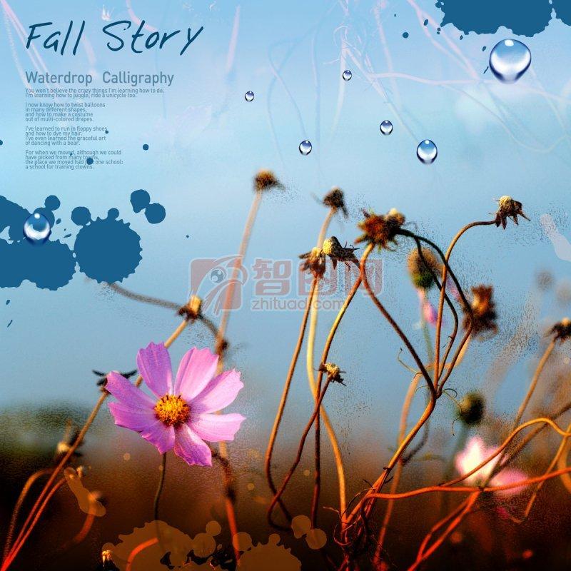 fall story秋天故事