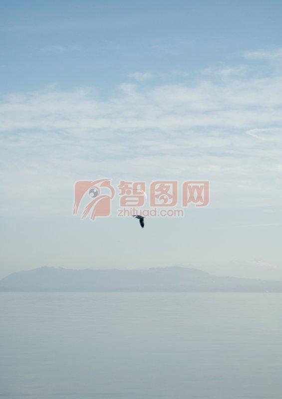 首页 摄影专区 自然景观 自然风景  关键词: 孤鸟翱翔 自然风景元素摄