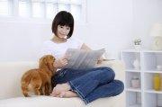 宠物狗元素摄影2
