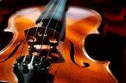 小提琴素材10