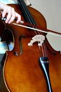 大提琴澳门永利赌场网址