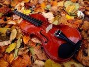 小提琴澳门永利赌场网址06
