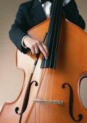 大提琴元素