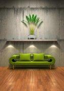 綠色沙發攝影