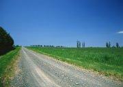 鄉間小路素材攝影