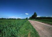 鄉間小路攝影