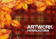 autumn绘画设计