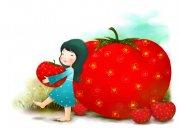 西红柿女孩