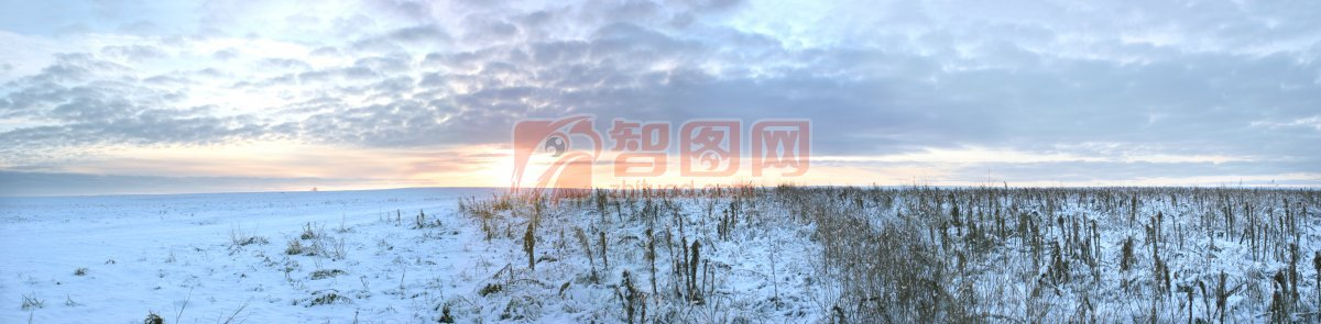 藍色背景雪景元素