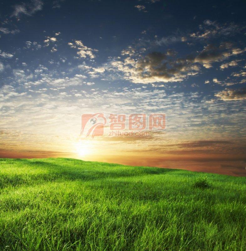 陽光余暉照耀