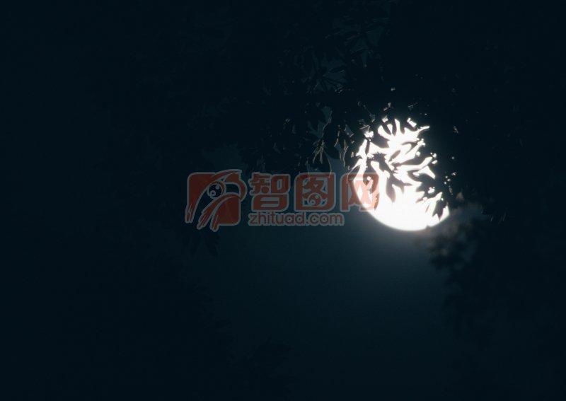 遮掩的月亮
