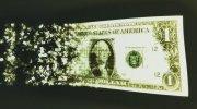 一美元纸币