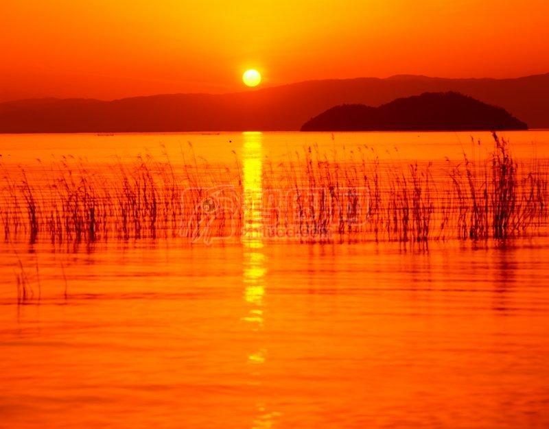火紅色景色元素