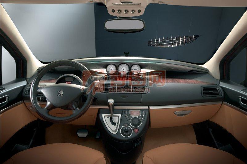 標致轎車內部元素