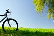 自行車元素