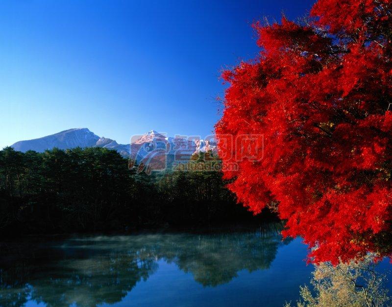 美麗風景元素