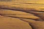 黃色海景元素