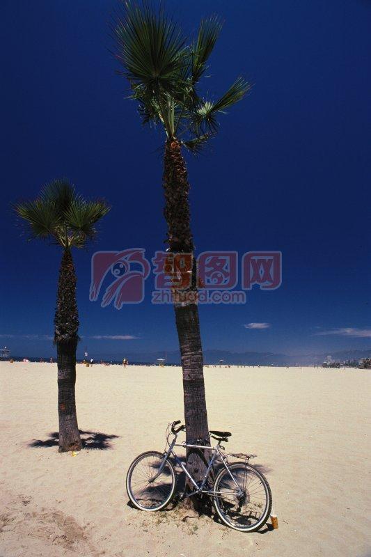 停靠的自行車