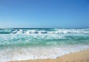 綠色海水素材