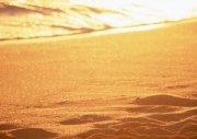 海景元素攝影