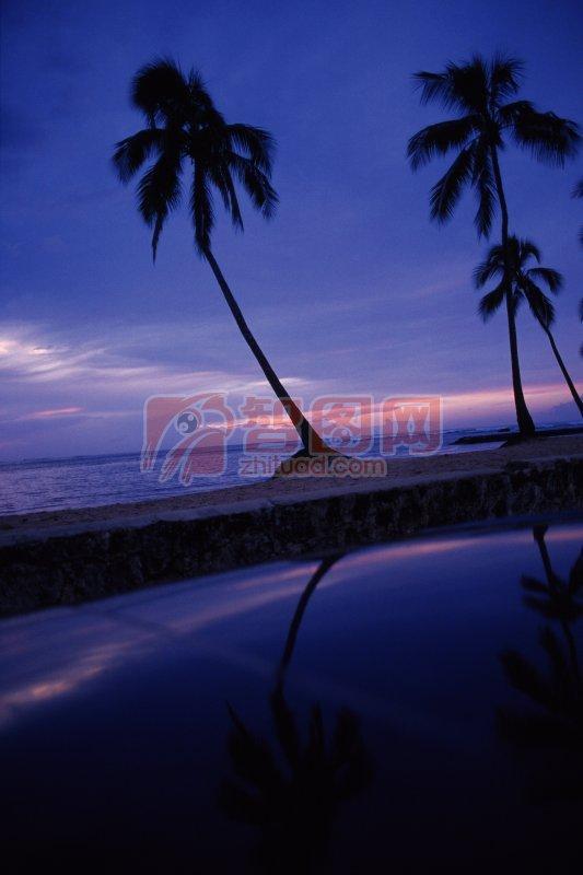 海邊風景元素
