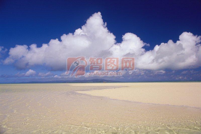 沙灘風景元素