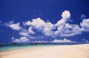 海邊沙灘元素