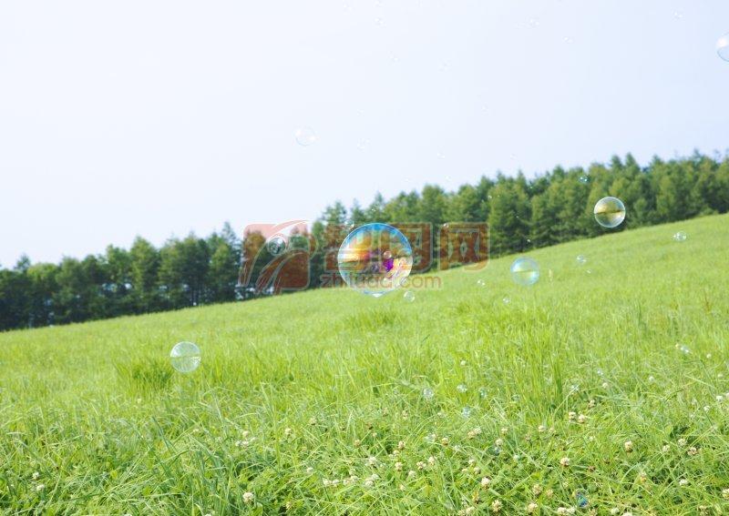 草原上的泡泡