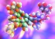 原子组成的分子