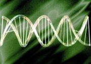 有机分子结构