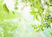 綠色背景城市