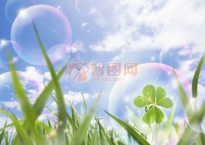 美丽泡泡 - 智图网