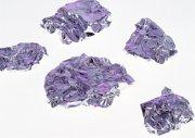 紫色元素攝影