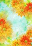 橘黄色花朵元素