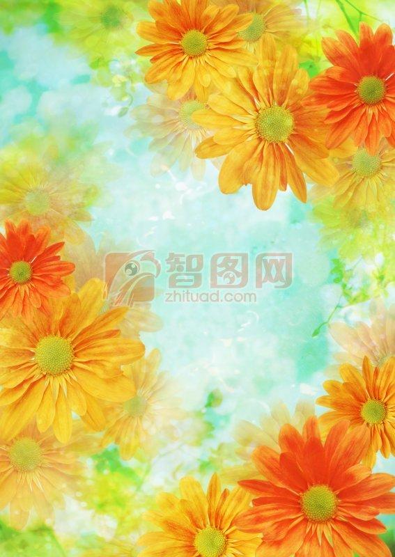 橘黃色花朵元素