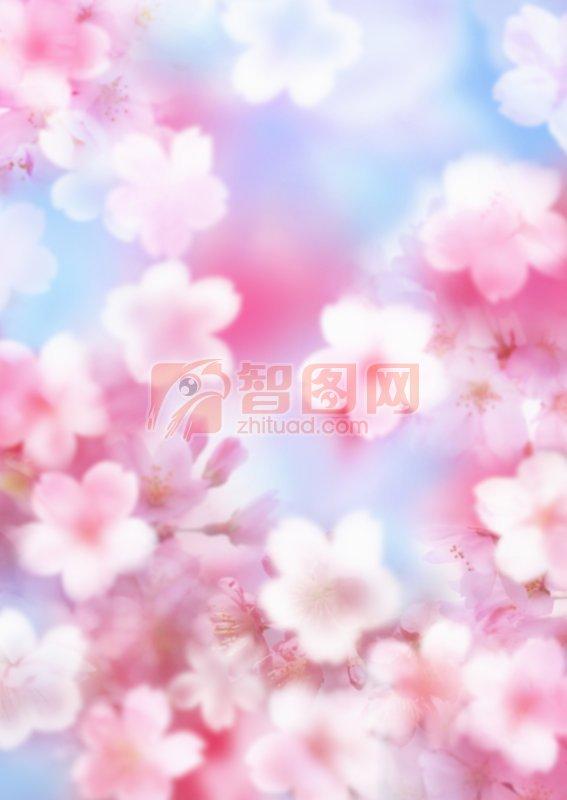 粉色鮮花元素