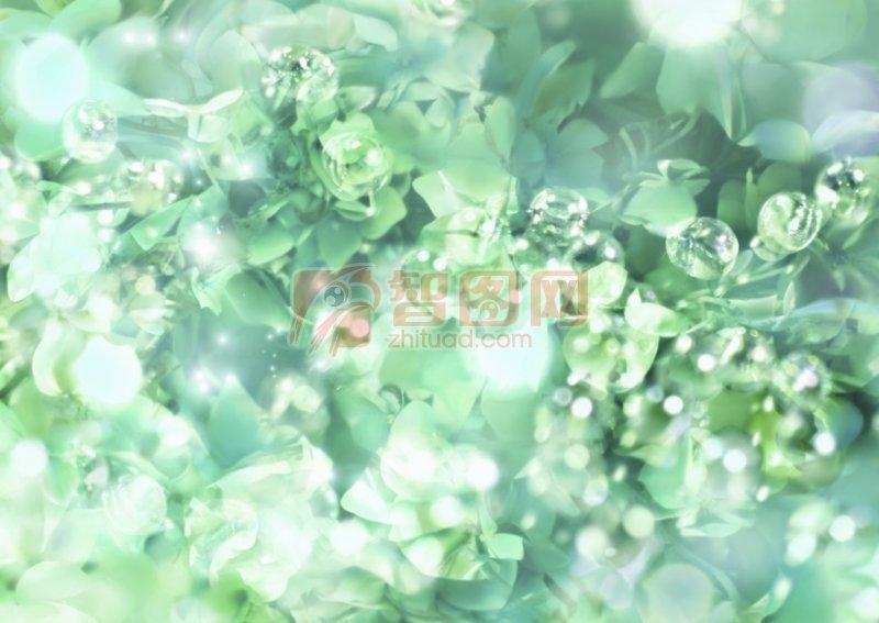 綠色鮮花攝影