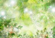 綠色花草元素